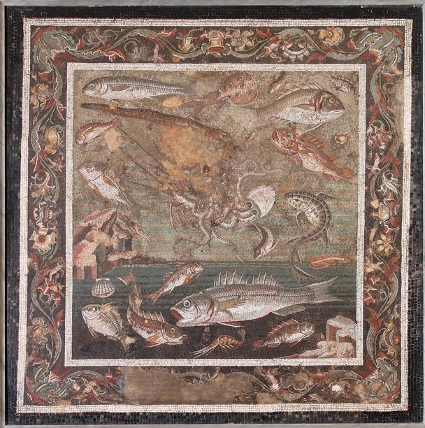 Inv. MANN 997(3) – Varietà marine. Mosaico da Pompei