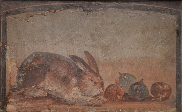 Inv MANN 8630 – Coniglio e fichi
